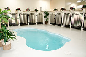 Animal Care Center Blue Ash Pool