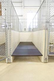 Canine Single Room