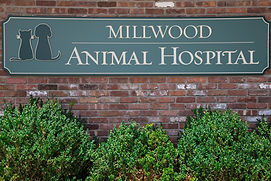 Millwood Animal Hospital Millwood NY