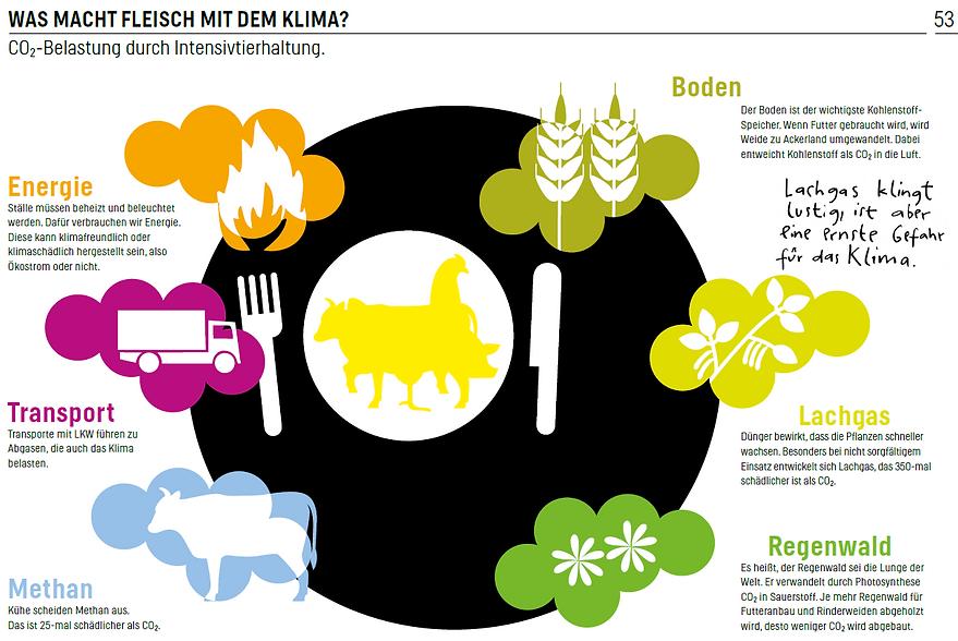 was macht Fleisch mit dem Klima.png