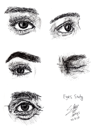 eyes study.png