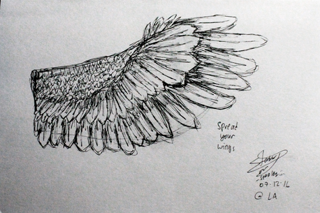 FIRST - wings.png