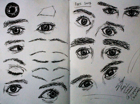 FIRST - STUDY eyes.png