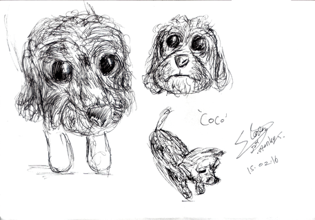 Sketch dog COCO.png