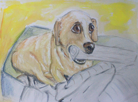 painting dog.png