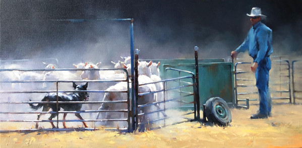 Sheepdog at work, Mansfield