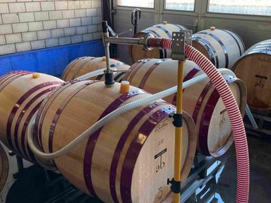 Momentane Arbeiten auf dem Weingut