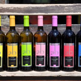 Flaschen ohne Jg_120.JPG