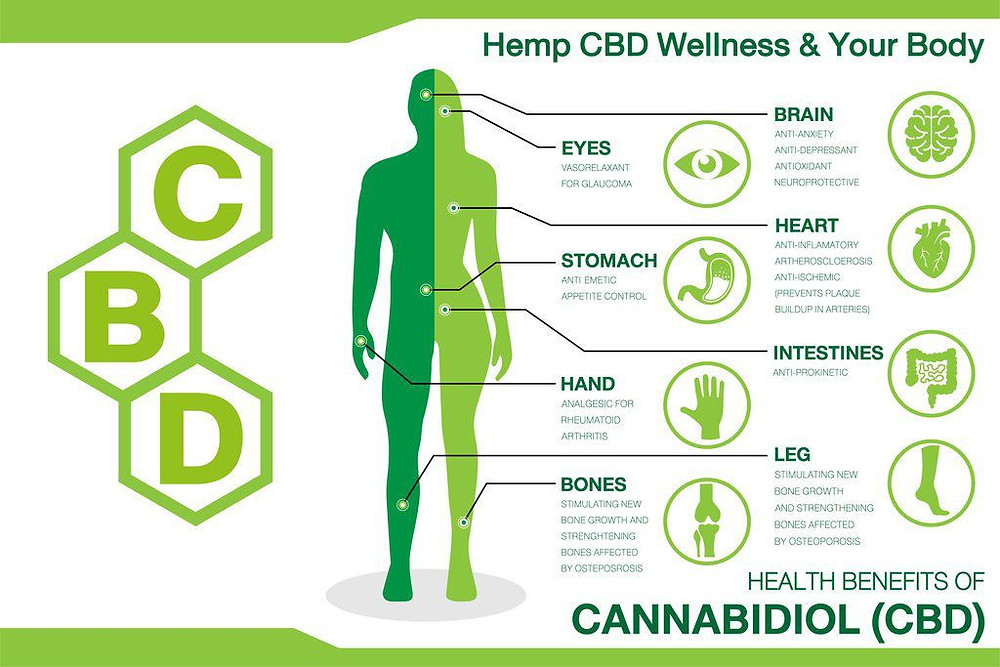 Information on how CBD products improve the bodies health.