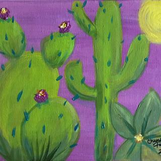 1 Cactus.jpg