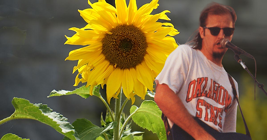 Jimmy Sunflower.png