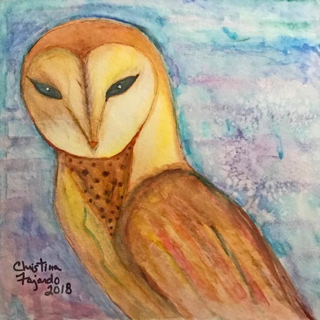 Yellow on Blue Owl