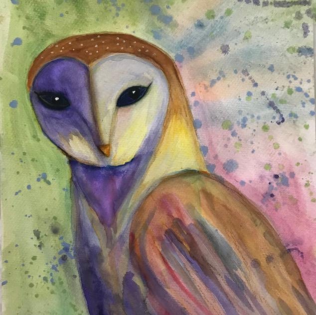 Purple Green Owl