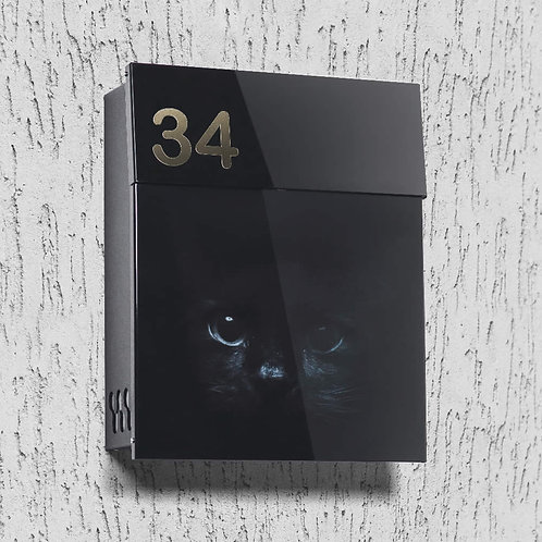 Mailbox with Black cat