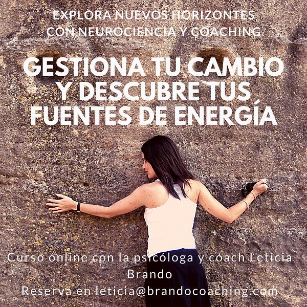 Gestion cambio y fuentes de energía.png