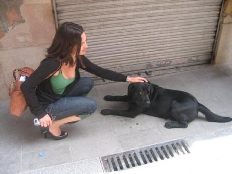 Hombres perros, mujeres gatas y reivindicando el realismo