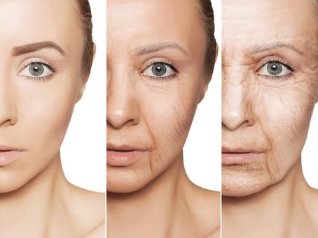 酵素が老化を左右する
