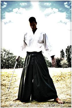 samuraj musasi darijan kurnik aikido beograd novi beograd zemun vracar