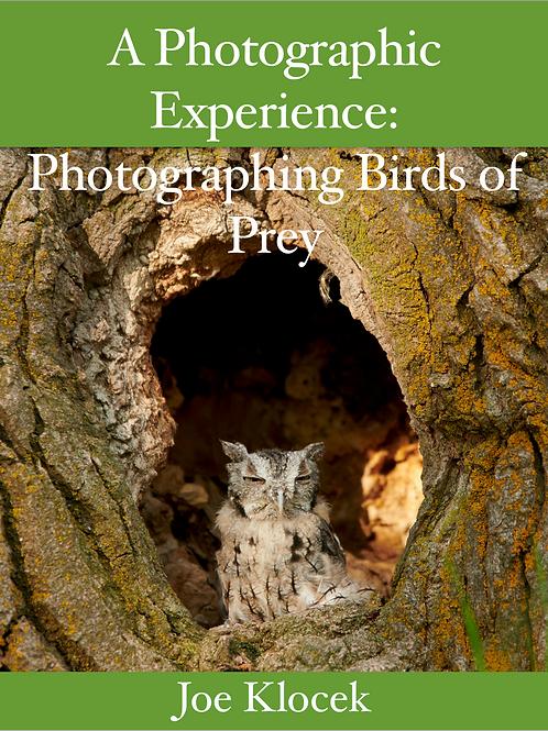 A Photographic Experience: Photographing Birds ofPrey