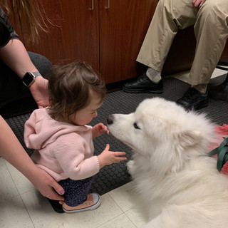 Dr. Carter's granddaughter, Gwen, playing with Makaio. (2019)