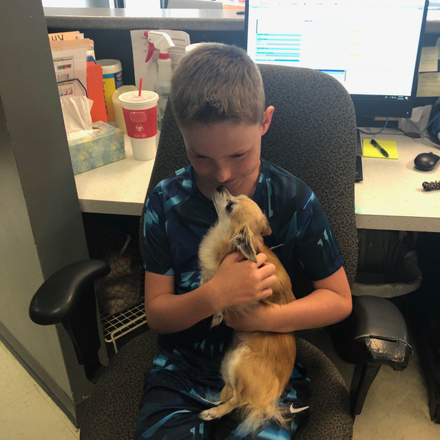 Trent and Lola the Chihuahua are the best of friends! (2019)
