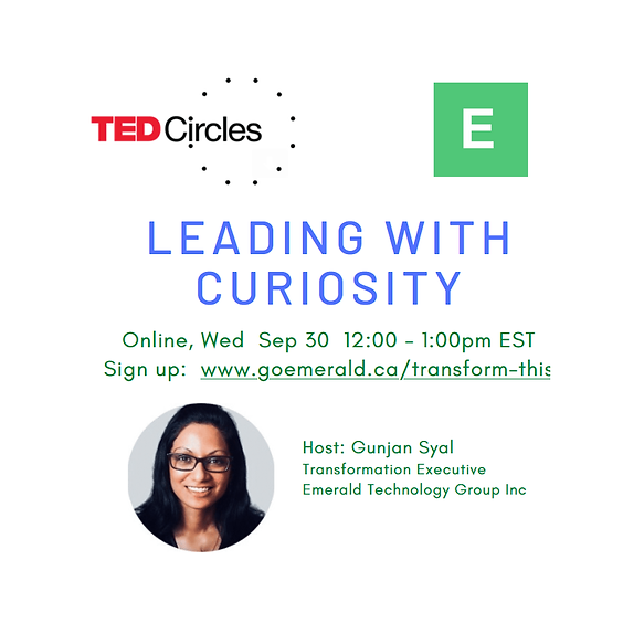 TED Circle: Leading With Curiosity