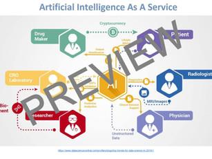 AI in Healthcare ($65)