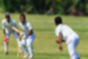 Cricket game action closeup unidentified