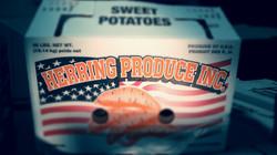 herring box_edited