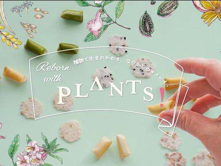 植物で生まれかわるなつかしのオイシイ PLANTS! をリリース