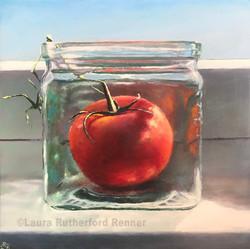 Hot House Tomato No. 2