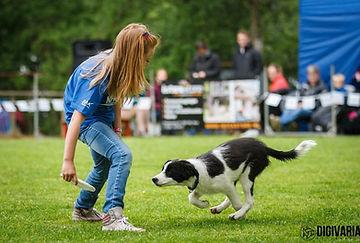 aanvraag dogfrisbee kinderfeestje