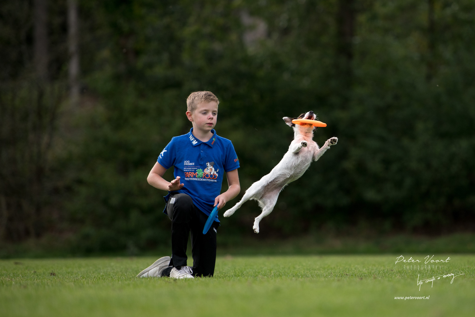 nfm dogfrisbee