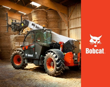 03 - Bobcat.jpg