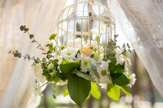 Foto jaula con flores.jpg