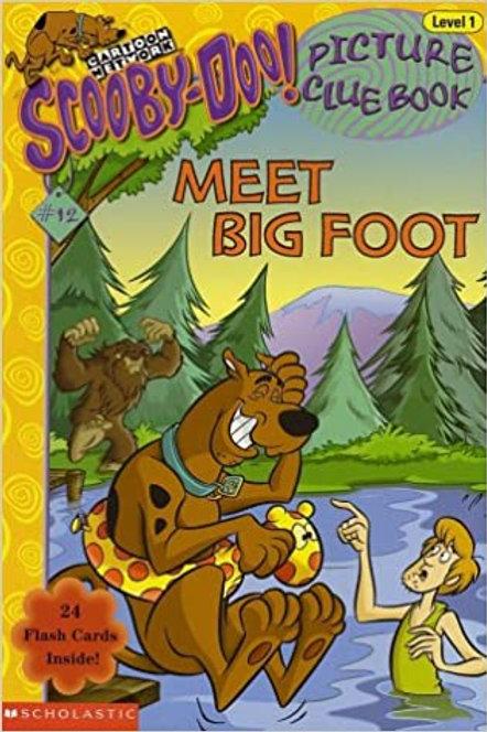 Meet Big Foot
