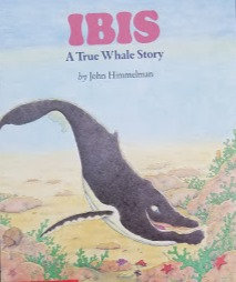 Ibis: A True Whale Story