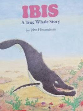 Ibis: A True Whale Story