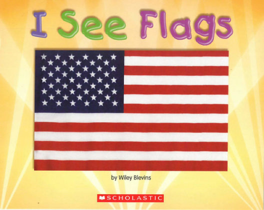 I See Flags