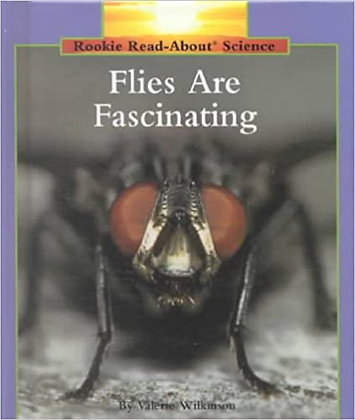 Flies Are Fascinating