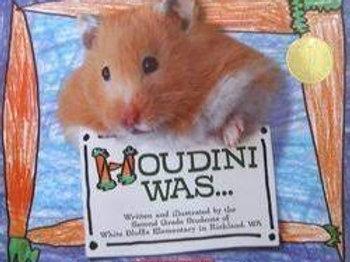 Houdini Was...