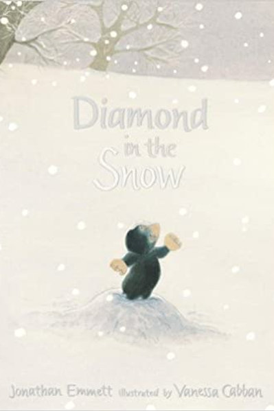 Diamond in the Snow