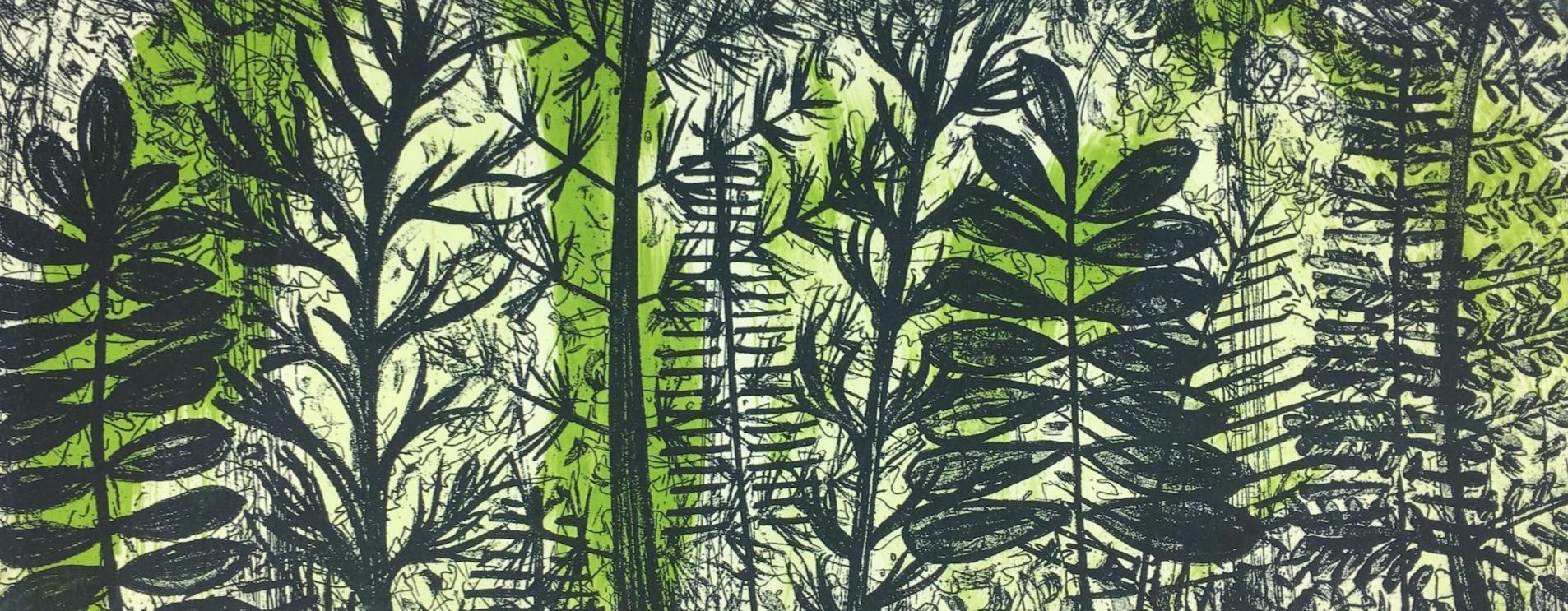 Ancient Ferns