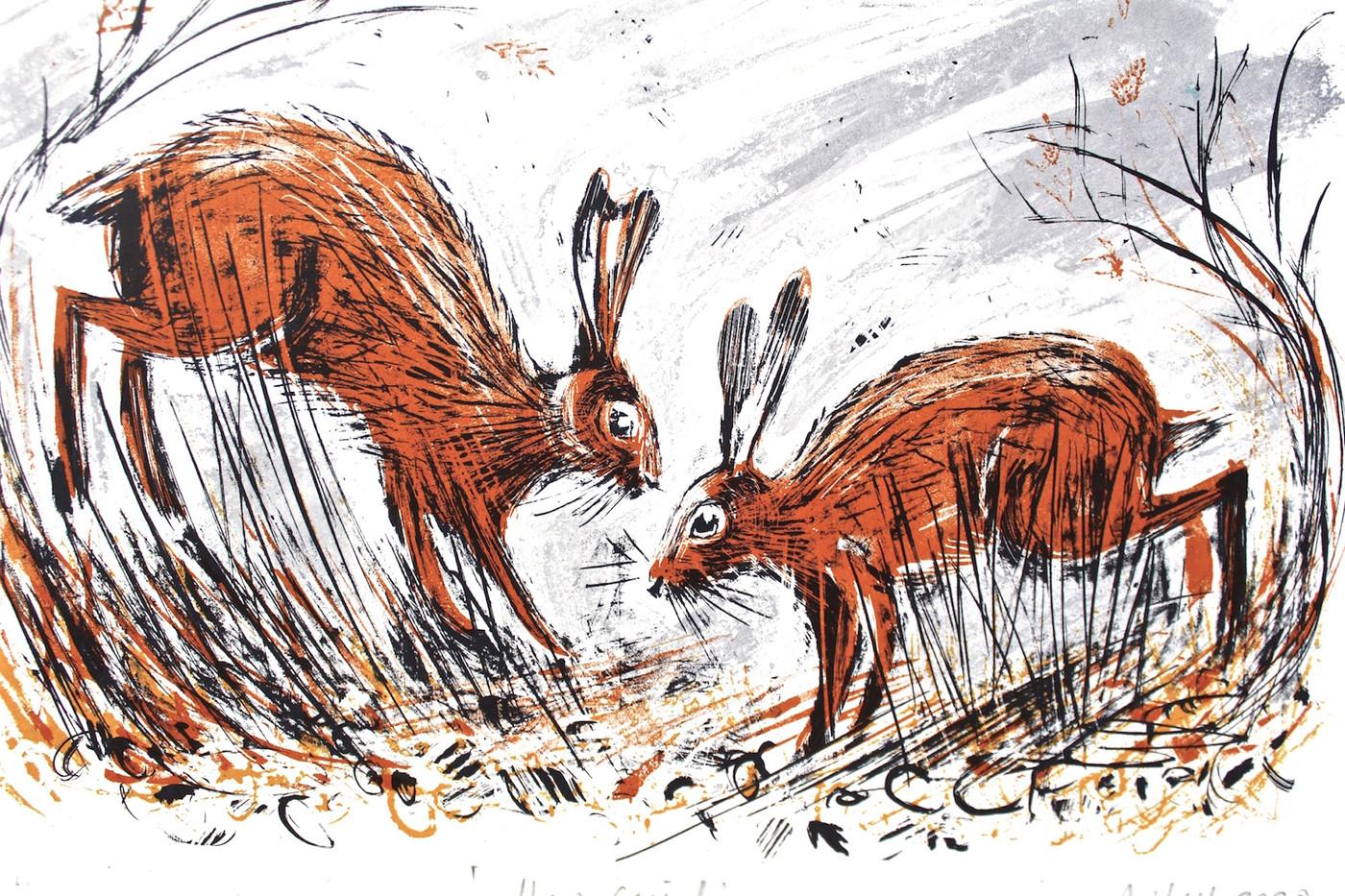 Hare Social