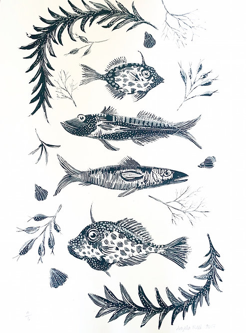 Four Fish in Black and White