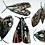 Thumbnail: 'May Day Moths' - Silkscreen Print