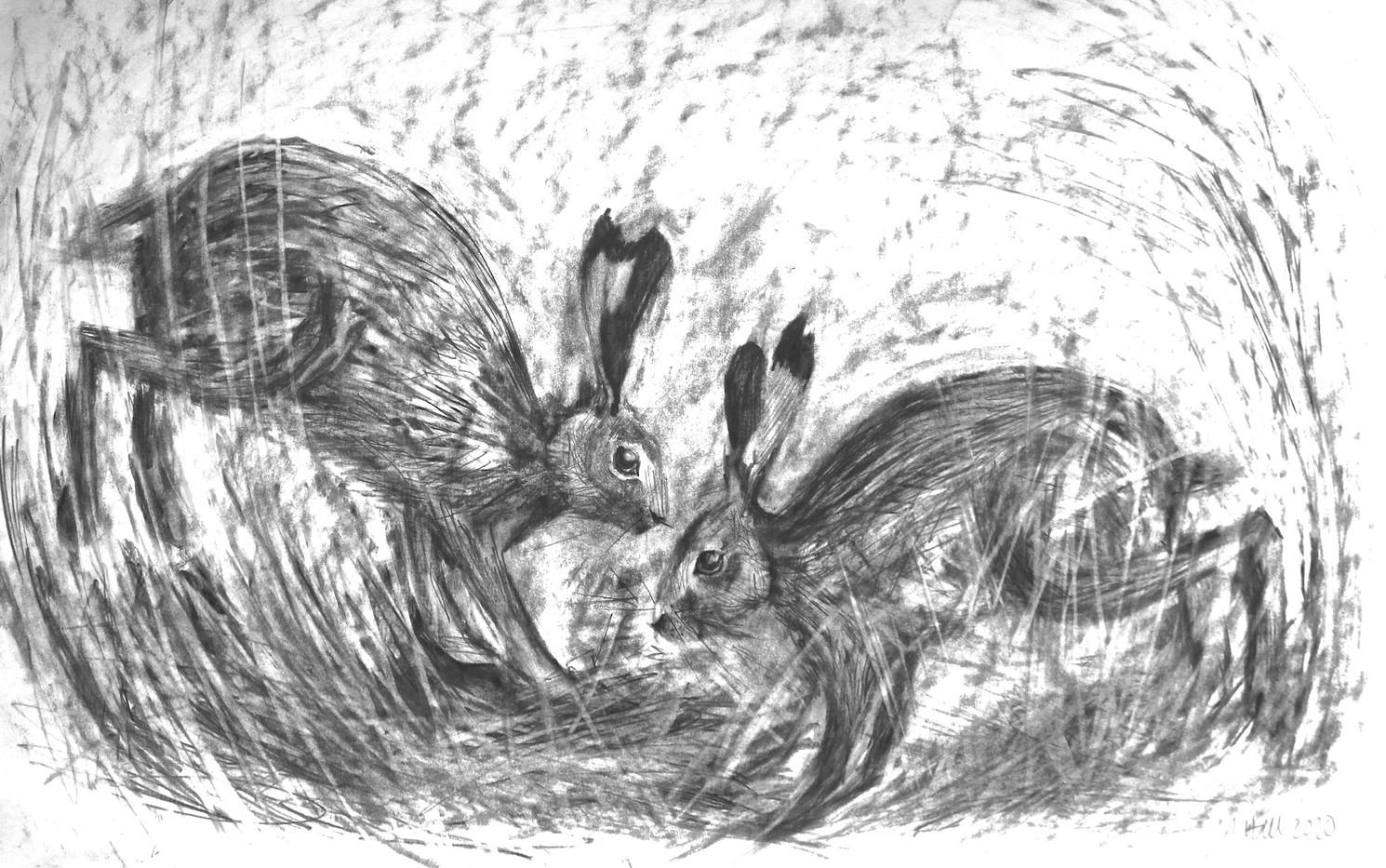 Dancing Hares