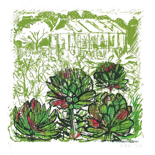 Greenhouse Views