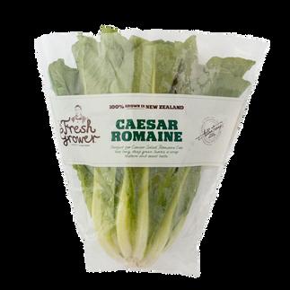 Caesar Romaine
