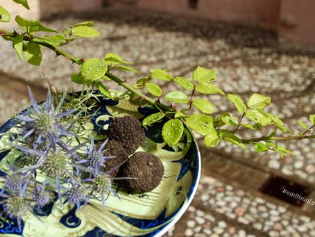 """Dolce far niente"" in Italy with  Gnocchi & fresh summer truffle"